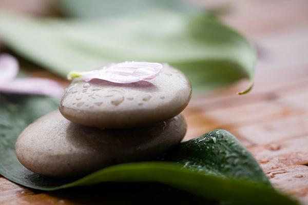 Vida práctica meditativa